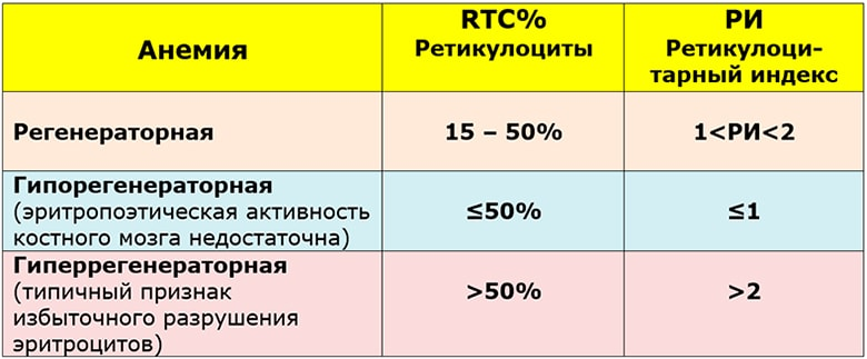 Ретикулоциты — норма и обозначение в анализах
