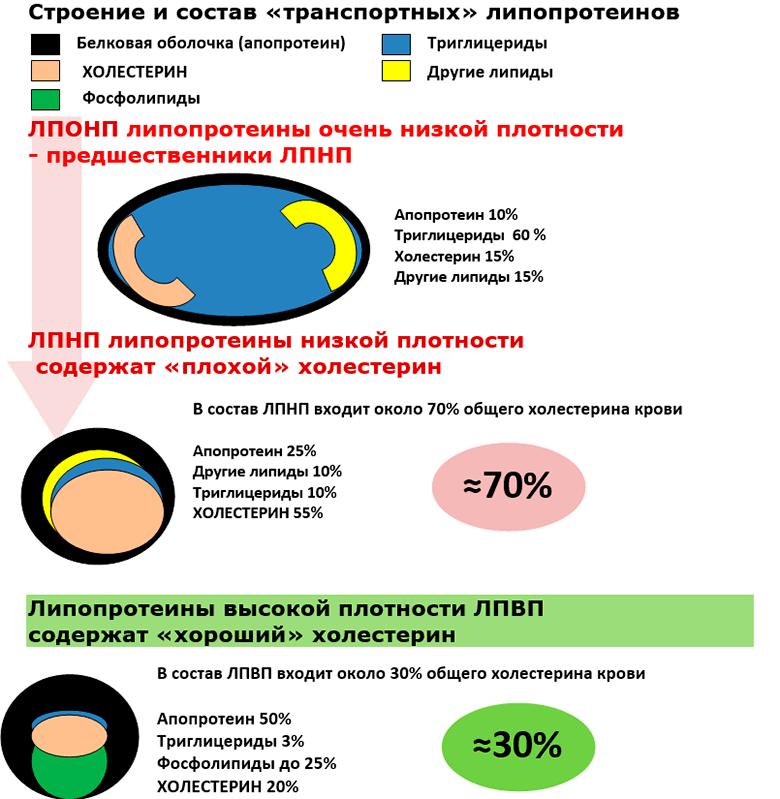 holesterin-snizhajushhie-produkty-img