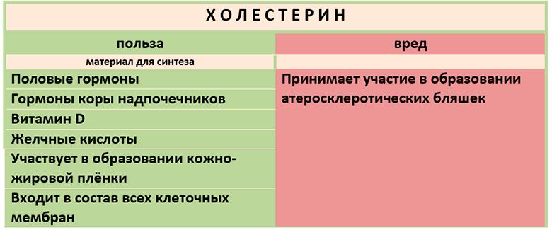 kak-ponizit-kholesterin-v-domashnikh-usloviyakh-holesterin