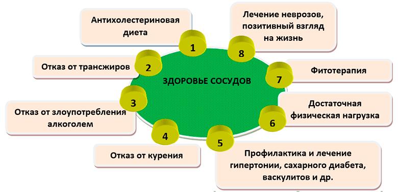 kak-ponizit-kholesterin-v-domashnikh-usloviyakh-zdorovie