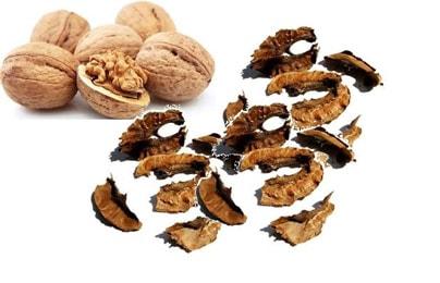 Перегородки грецкого ореха при мастопатии